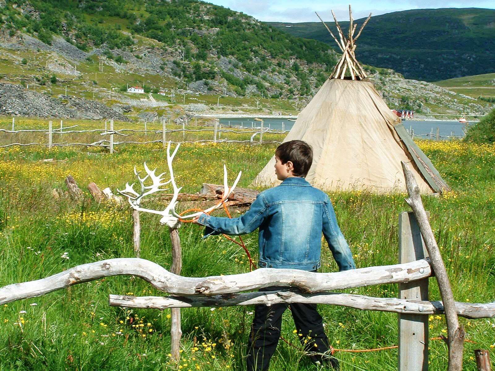Foto av ung gutt med lasso rundt et reinhorn og lavvo i bakgrunnen.